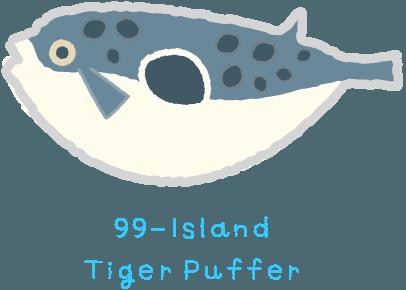 99-Island Tiger Puffer